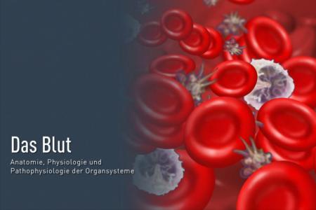 Das Blut- Aufbau und Funktion