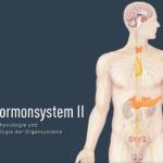 Hormonsystem