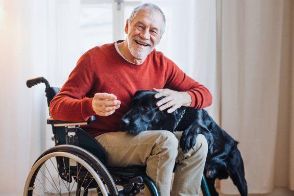 Heimtiere in der Seniorenbetreuung